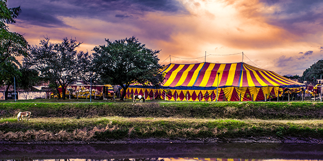 Circus tent by a river