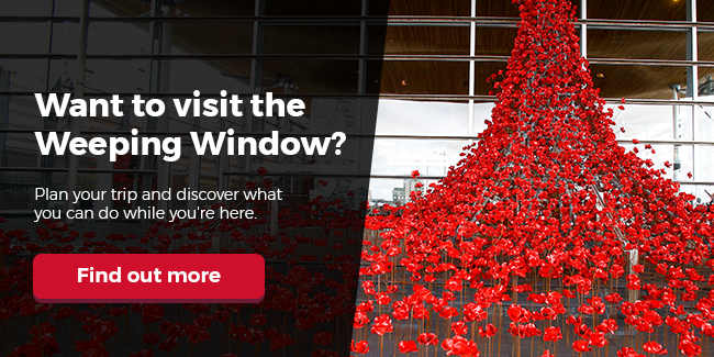 Visiting the Weeping Window
