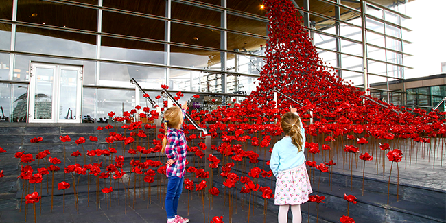 Weeping Window poppy sculpture at the Senedd, Cardiff